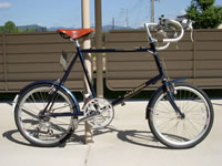 RALEIGH(RSP)(RSW special)