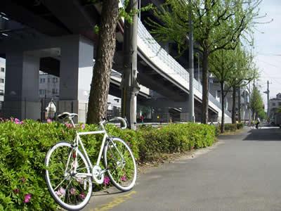 Progressive Racing(プログレッシブ・レーシング)SS-110