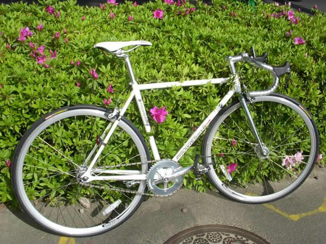 自転車の 自転車 固定ギア フリーギア : Progressive Racing(プログレッシブ ...