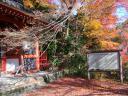 洛西金蔵寺