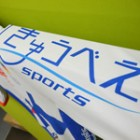 TEAM PROTEK JAPAN