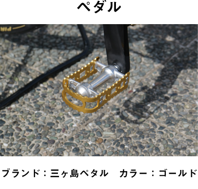 ペダル ヒカル ロードバイク 自転車 動画